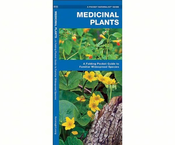 use of plants in medicines essay Essay on importance of health and medicine some of us believe in herbal medicines, for it is pure came from plants and no other medicine essay.